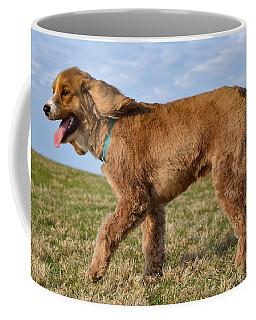 Sunny Stroll Coffee Mug