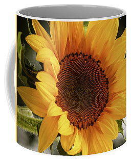 Coffee Mug featuring the photograph Sunny Sunflower by Jordan Blackstone