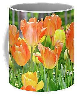 Sunny Tulips Coffee Mug