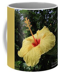 Sunny Yellow Coffee Mug by Mary Haber