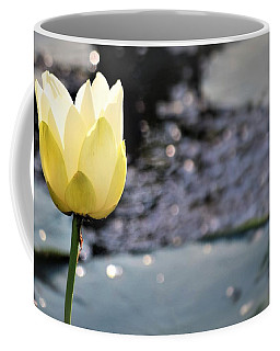 Sunrise Bayou Beauty Coffee Mug by John Glass