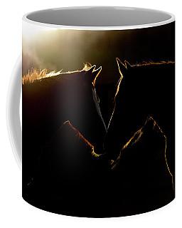 Sunrise Companions Coffee Mug