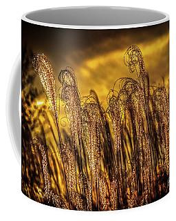 Sunrise In Missouri Coffee Mug