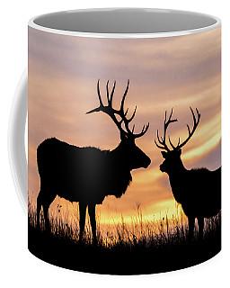 Coffee Mug featuring the photograph Sunrise by Jay Stockhaus