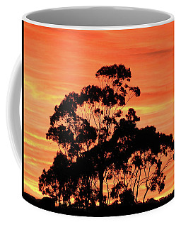 Coffee Mug featuring the photograph Sunrise Mystery by Mark Blauhoefer