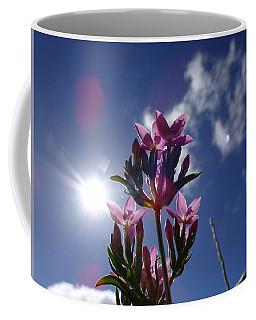 sunseeking Centaury Coffee Mug
