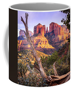 Sunset At Cathedral Rock Coffee Mug by Alexey Stiop