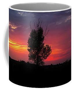 Sunset At The Danube Banks Coffee Mug