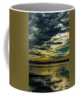 Sunset At The Wetlands Coffee Mug
