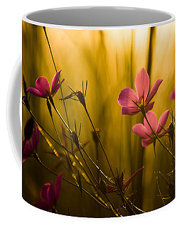 Sunset Beauties Coffee Mug by Parker Cunningham