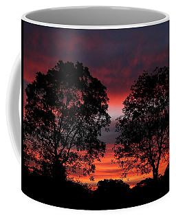 Sunset Behind Two Trees Coffee Mug by Sheila Brown