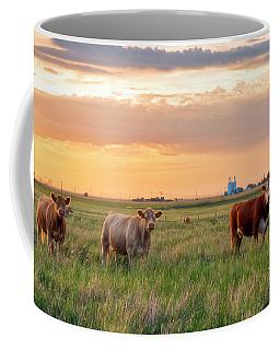 Sunset Cattle Coffee Mug