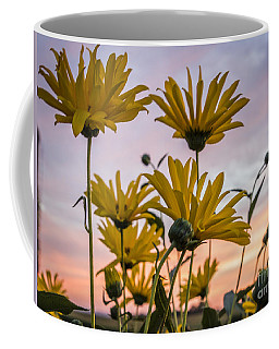 Sunset Delight Coffee Mug
