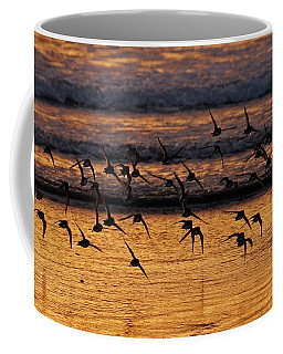 Sunset Flight Coffee Mug