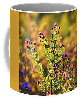 Coffee Mug featuring the photograph Sunset Flowers by Christina Rollo