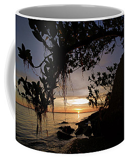 Sunset From The Mangroves Coffee Mug