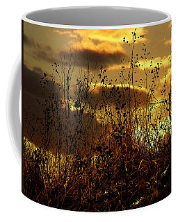 Sunset Grasses Coffee Mug by Julie Hamilton