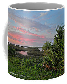 D32a-89 Sunset In Crystal River, Florida Photo Coffee Mug