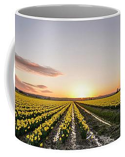 Sunset In Skagit Valley Coffee Mug