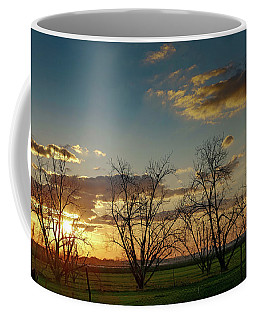 Sunset In The Fields Of Binyamina Coffee Mug by Arik Baltinester