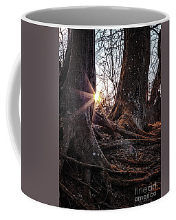 Sunset In The Woods Coffee Mug