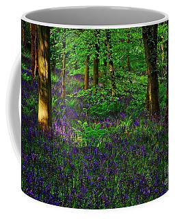 Sunset On Bluebells In Spring Coffee Mug