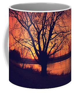 Sunset On Willow Pond Coffee Mug