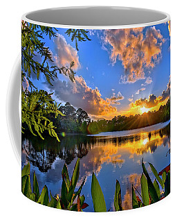 Coffee Mug featuring the photograph Sunset Over Hidden Lake In Jupiter Florida by Justin Kelefas