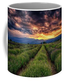 Sunset Over Lavender Field  Coffee Mug