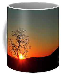 Coffee Mug featuring the photograph Sunset Over Virginia by Darren Fisher