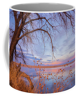 Coffee Mug featuring the photograph Sunset Overhang by Darren White