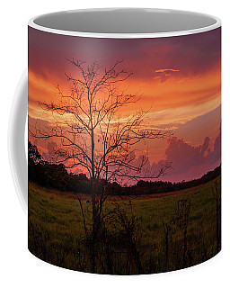 Sunset Pasture Coffee Mug
