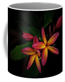 Sunset Plumerias In Bloom #2 Coffee Mug