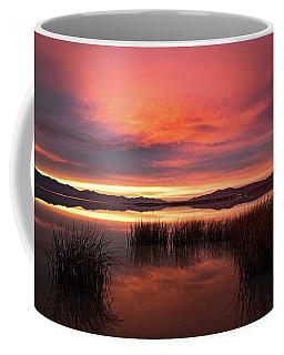 Sunset Reeds On Utah Lake Coffee Mug