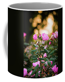 Coffee Mug featuring the photograph Sunset Roses by Parker Cunningham