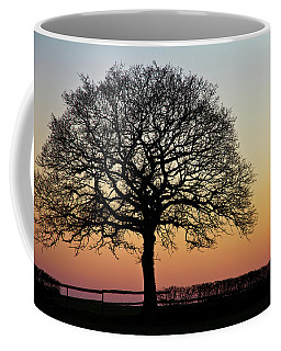 Coffee Mug featuring the photograph Sunset Silhouette by Clare Bambers