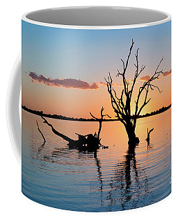 Coffee Mug featuring the photograph Sunset Silhouette by Ray Warren