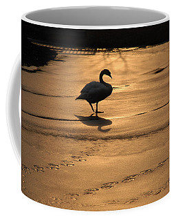 Coffee Mug featuring the photograph Sunset Swan by Richard Bryce and Family