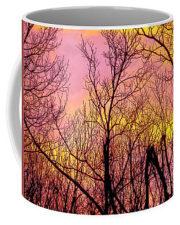 Sunset Through The Trees Coffee Mug by Craig Walters