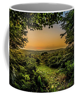 Sunset Through Trees Coffee Mug