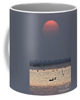 Sunset With Coots Coffee Mug