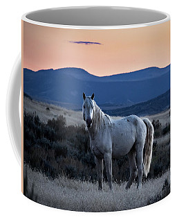 Sunset With Wild Stallion Tripod In Sand Wash Basin Coffee Mug