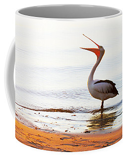 Sunshine Coast Pelican Coffee Mug