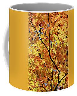 Coffee Mug featuring the photograph Sunshine In Maple Tree by Elena Elisseeva