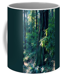 Sunshine In The Forest Coffee Mug