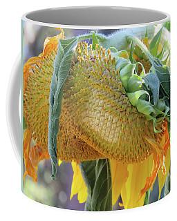 Sunshine In The Garden - Ageless Beauty 6 Coffee Mug by Brooks Garten Hauschild