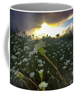 Coffee Mug featuring the photograph Superbloom Beauty by Chris Tarpening