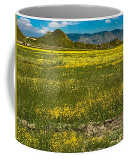 Coffee Mug featuring the photograph Superbloom In Hemet Ca by Chris Tarpening