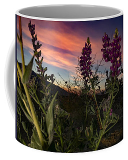 Coffee Mug featuring the photograph Superbloom In The Desert by Chris Tarpening