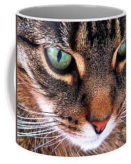 Surmising Coffee Mug